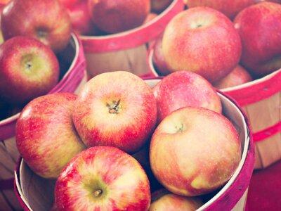 Wall mural Apples