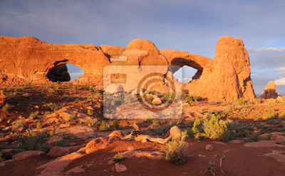 Wall mural Arches NP