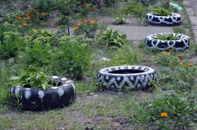 Art deco for the ghetto.Painted car tires in the role of flower pots. Depressive district. Residential area in Kiev at summer. Exterior.