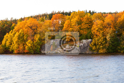 Autumn forest and lake landscape