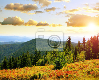 Autumn landscape in National park Bayerischer Wald at sunset, view from the mountain Grosser Arber, Germany.