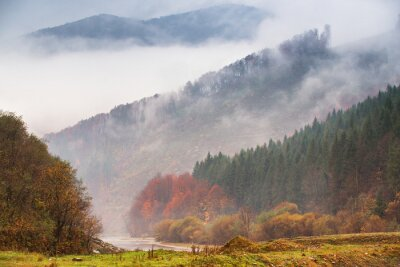 Wall mural Autumn rain and fog in the mountains. Colorful autumn forest background