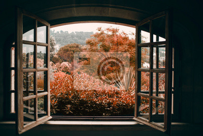 Wall mural Autumn through an open vintage window