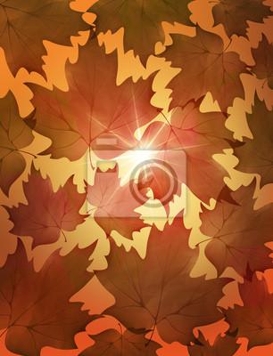 Autunno foglie-Autumn Leaves-Feuilles D'Automne-5