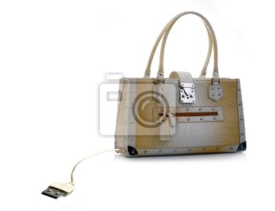 Bag with USB cable. Conceptual background