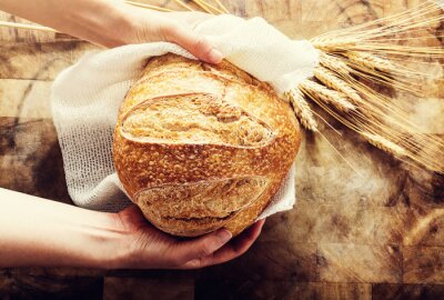 Wall mural Baker holding a loaf of bread on rustic bacgkround