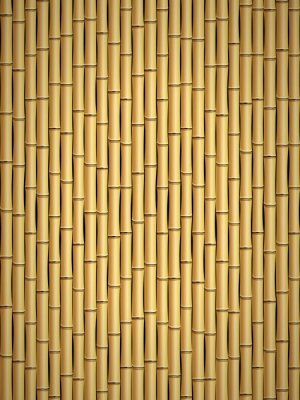 Wall mural Bamboo pattern