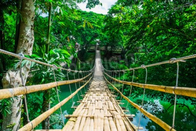 Wall mural Bamboo pedestrian suspension bridge over river in tropical forest, Bohol, Philippines