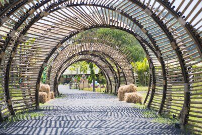 Wall mural bamboo tunnel structure in garden