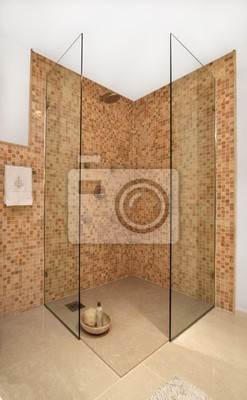 Bathroom and shower interior in modern home
