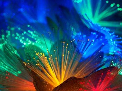 Beautiful fairy glowing flowers