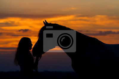 Beautiful horse with girl silhouette on sunset
