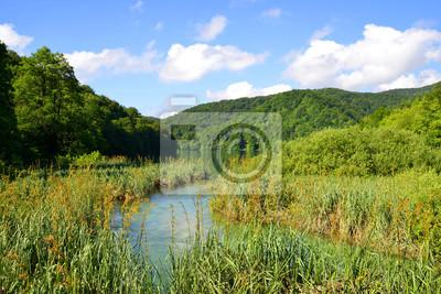 Beautiful landscape in the Plitvice Lakes National Park, Croatia.