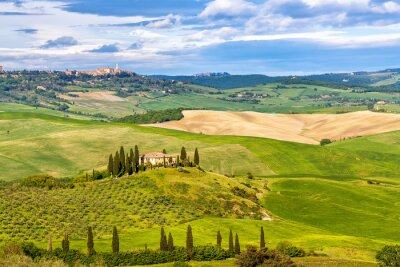 Wall mural Beautiful landscape in Tuscany, Italy