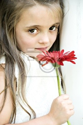 Beautiful little girl holding a red gerber daisy.