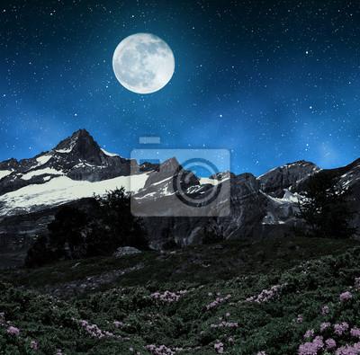 Beautiful mountain landscape in night. Zinalrothorn in Pennine alps, Switzerland.