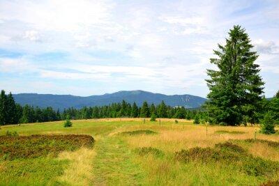 Beautiful mountain landscape in the national park Sumava. View on the mount Jezerni hora and Spicak. Czech Republic.
