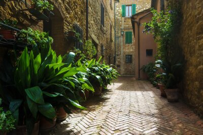 Wall mural Beautiful streets of the medieval Tuscan village in Italy, Pienz