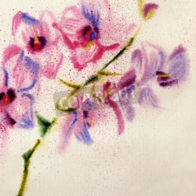Wall mural Beautiful watercolor orchid