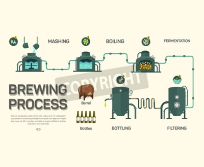 Wall mural Beer brewing process infographic. Flat style, infographic