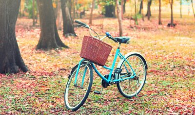 Wall mural Bike for leisure travel. ( Focus at basket )  in vintage retro tone