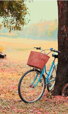 Wall mural Bike for leisure travel. ( Focus at basket ) vintage retro tone