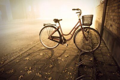 Wall mural Bike in autumn