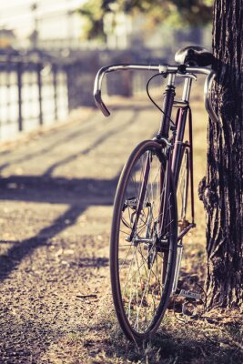 Wall mural Bike road fixed gear bicycle