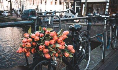 Wall mural Bike with tulips