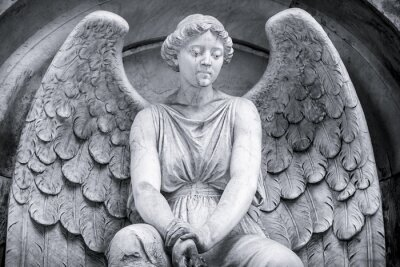 Wall mural black and white shot of an angel.