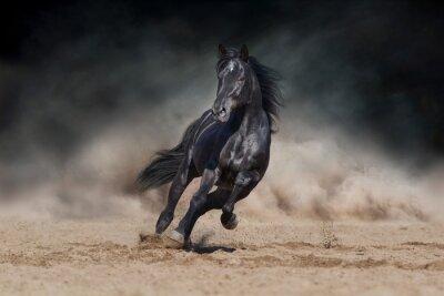 Wall mural Black stallion run on desert dust against dramatic background