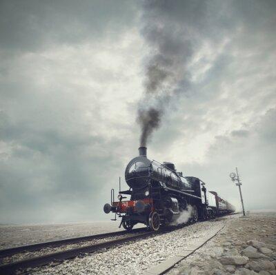 Wall mural black train