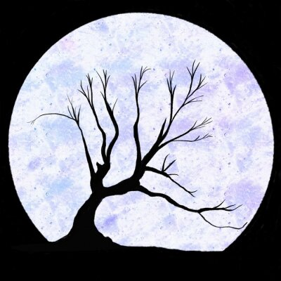 Wall mural Black tree silhouette on black background with moon