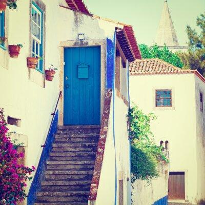 Wall mural Blue Door