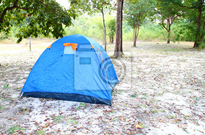 blue tent on the forest
