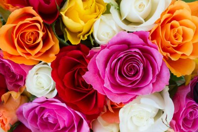 Wall mural bouquet of fresh roses