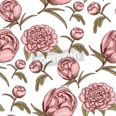 Wall mural Bouquet vintage hand drawn style flowers bud wedding bloom elegant birthday nature design romantic flora blossom seamless pattern background vector illustration.