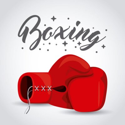 Wall mural boxing sport design