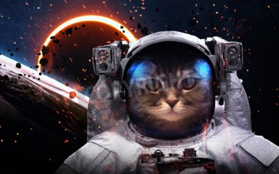 Wall mural Brave cat astronaut at the spacewalk. This image elements furnished by NASA