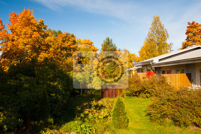 Bright autumn colors in backyard trees