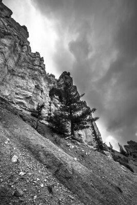Wall mural Bryce Canyon Black and White Photography