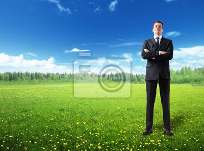 businessman on spring field