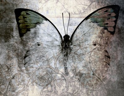 Wall mural butterfly