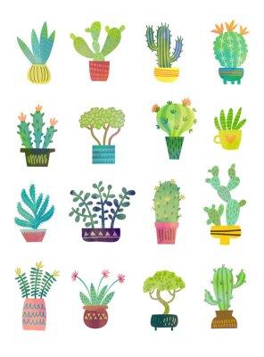 Wall mural cactus watercolor poster