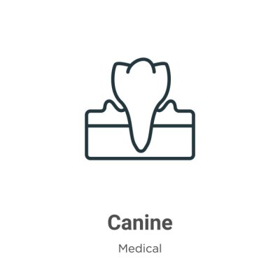 Wall mural Canine outline vector icon. Thin line black canine icon, flat vector simple element illustration from editable medical concept isolated stroke on white background