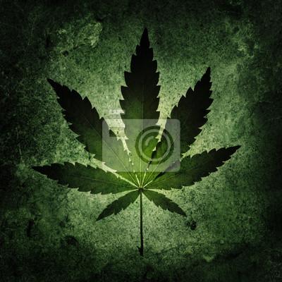 Cannabis on grunge background