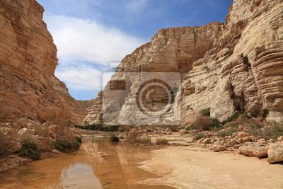 Canyon in stony desert