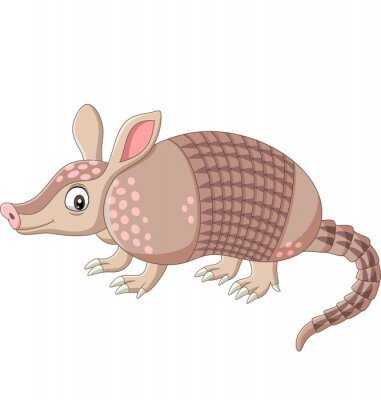 Wall mural Cartoon armadillo on white background