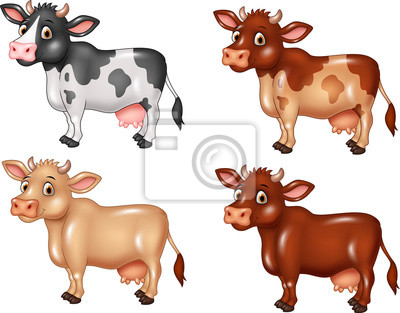 Cartoon cow collection isolated on white background