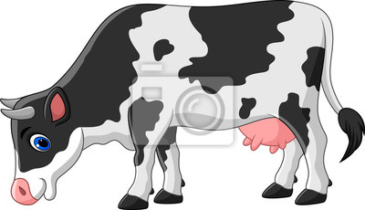 Cartoon cow isolated on white background
